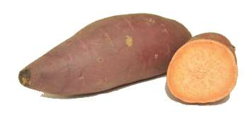 Organic Oriental Sweet Potato